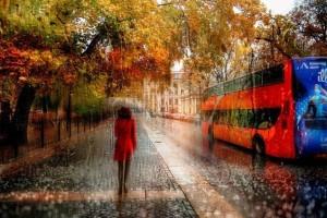 Η μαγεία της βροχής μέσα από 10 εντυπωσιακές φωτογραφίες!