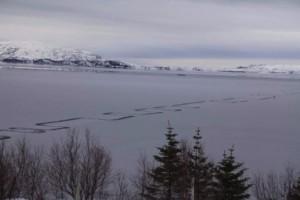 Το παράξενο φαινόμενο σε λίμνη της Ισλανδίας που έχει τρομάξει τους κατοίκους! (photos)