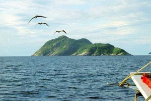 Το «καταραμένο» νησί που ζει το πιο δηλητηριώδες φίδι του κόσμου