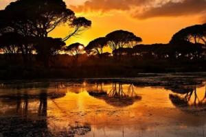 Η φωτογραφία της Ημέρας: Λιμνοθάλασσα Κοτυχίου