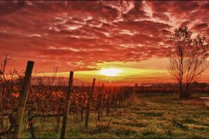 Η φωτογραφία της ημέρας: Ένα υπέροχο ηλιοβασίλεμα!