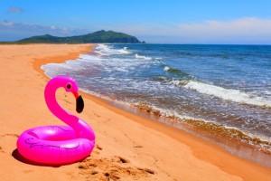Κοπελιά, το φλαμίνγκο σου και σ' άλλη παραλία!