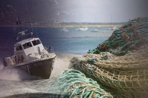 """Μαραθόπολη: Ψαριά που έχει προκαλέσει τρόμο σ' όλο το διαδίκτυο! Έπαθαν """"εγκεφαλικό"""" όταν σήκωσαν τα δίχτυα! (photo)"""