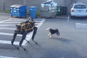 """Θα """"κλάψετε"""": Σκύλος συναντάει ρομπότ και οι αντιδράσεις του είναι το κάτι άλλο! (video)"""