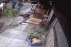 Συγκλονιστικό βίντεο: Δέντρο καταπλάκωσε παρουσιάστρια την ώρα που περπατούσε στον δρόμο!