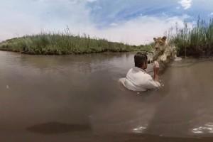 Βίντεο που κόβει την ανάσα! Λιοντάρι πηδάει και... αγκαλιάζει εκπαιδευτή ζώων!