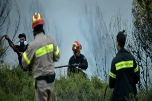 Φωτιά ξέσπασε κοντά στην Εγνατία Οδό στην Αλεξανδρούπολη!