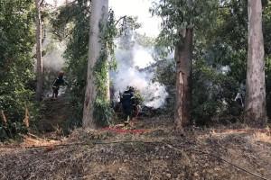Υψηλός κίνδυνος πυρκαγιάς την Πέμπτη (17-08): Ποιες περιοχές είναι σε κατάσταση συναγερμού!