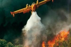 Μεγάλη πυρκαγιά ξέσπασε στην Ηλεία!