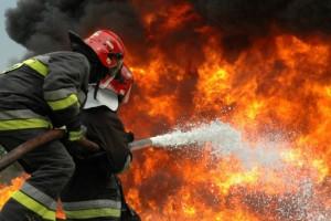 Φθιώτιδα: Στο νοσοκομείο 37χρονος πυροσβέστης - Τον δάγκωσε σκύλος την ώρα που έσβηνε την φωτιά