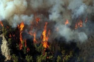 Ισχυρή πυρκαγιά στην Ζαχάρω: Σε τι κατάσταση η φωτιά βρίσκεται στο χωριό που καταστράφηκε 10 χρόνια πριν;