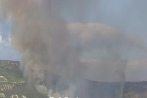 Τουλάχιστον 120 πυροσβέστες δίνουν μάχη με τις φλόγες στη Νεμέα - Τι δηλώνει ο δήμαρχος για την καταστροφή