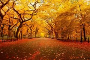 Το ξέρατε; Στις 22 Σεπτεμβρίου έχουμε φθινοπωρινή ισημερία αλλά όχι ίση μέρα και νύχτα!