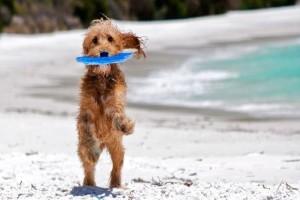 Συνεχίζει το καλοκαίρι! Καιρός ιδανικός για παραλίες στην καρδιά του Οκτώβρη!