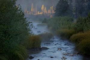 Η φωτογραφία της ημέρας: Μέσα στην φύση της Αριζόνα!