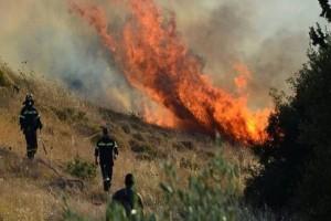 Πυρκαγιά ξέσπασε στην Ερμιόνη Αργολίδας