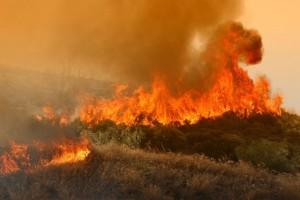 Μεγάλη φωτιά ξέσπασε στην Κορινθία