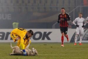 Ποδοσφαιρικός αγώνας σταμάτησε λόγο εισβολής σκύλου που ήθελε χάδια!