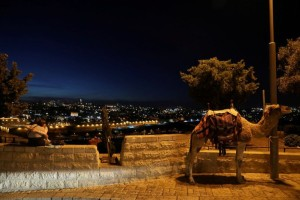 Η φωτογραφία της ημέρας: Ένα ήρεμο χαλαρό βράδυ!