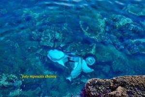Χανιά: Ο οδηγός της μηχανής αποδείχτηκε... χειμερινός κολυμβητής! (photos)