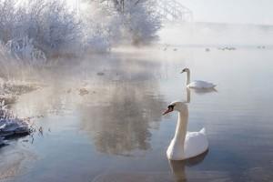 Ο χειμώνας είναι τόσο όμορφος όσο και ψυχρός! - Εντυπωσιακά χειμωνιάτικα τοπία που σε «ταξιδεύουν»