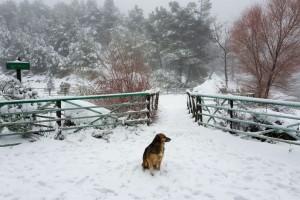 Ραγδαία επιδείνωση του καιρού: Ψυχρή εισβολή - Που θα χιονίσει;