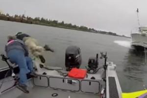 Απίστευτο βίντεο: Έπεσαν στο νερό για να γλιτώσουν από ένα ταχύπλοο!