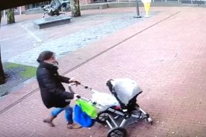 Σοκαριστικό βίντεο: Δέντρο παραλίγο να πλακώσει μητέρα και παιδί!