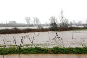 Υπερχείλισαν ποτάμια, στρέμματα πλημμύρισαν, κινδυνεύουν χωριά στα Τρίκαλα!