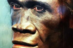 Ο πρώτος όρθιος άνθρωπος: Mίλησε πριν 1,5 εκατ. χρόνια, έφτιαξε πλεούμενα και έφθασε στην Κρήτη!