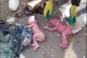 Βίντεο - οργής: Παράτησαν νεογέννητα σε σκουπιδότοπο! (videos)