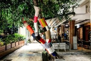 Σε ποιόν κεντρικό πεζόδρομο της Αθήνας έντυσαν τα δέντρα με πολύχρωμα... πουλόβερ;