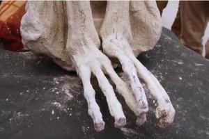 Άνθρωπος ή εξωγήινος; Βρέθηκε «πλάσμα» με τρία δάχτυλα στο Περού!