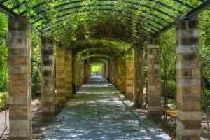 Τα 7 ωραιότερα πάρκα της Αθήνας! Μια ανάσα πράσινου…