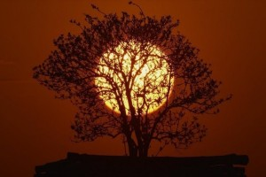 Η φωτογραφία της ημέρας: Ο ήλιος δύει στο Mezopeterd της Ουγγαρίας!
