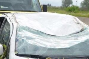 Τραγωδία στην Εγνατία Οδό: Δέντρο έπεσε από τον αέρα και πλάκωσε ΙΧ! Νεκρός ο ένας επιβάτης (photo)