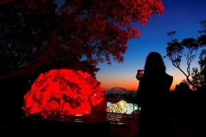 Η φωτογραφία της ημέρας: Τα γλυπτά στο φεστιβάλ φωτός «Vivid Sydney» στον ζωολογικό κήπο Taronga!