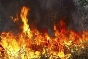 Ισχυρή πυρκαγιά στην Κρήτη!