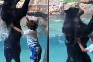 Απίστευτο βίντεο: Η αρκούδα που μιμείται ένα παιδί χοροπηδά μαζί του!