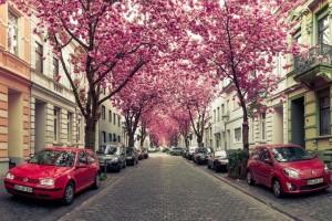 Οι ομορφότεροι δρόμοι σε όλο τον κόσμο!