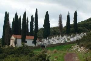 Αποκλείεται να το γνώριζες: Για ποιο λόγο φυτεύουν κυπαρίσσια στα νεκροταφεία!
