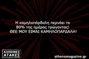 Η καμηλοπάρδαλη περνάει το  80% της ημέρας τρώγοντας!  ΘΕΕ ΜΟΥ ΕΙΜΑΙ ΚΑΜΗΛΟΠΑΡΔΑΛΗ!