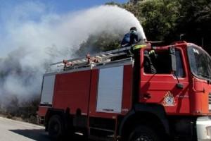 Ηλεία: Σε εξέλιξη πυρκαγιά σε δασική έκταση