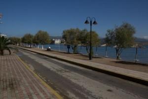 """Σοκ στην Εύβοια: """"Έσβησε"""" στην μέση του δρόμου!"""