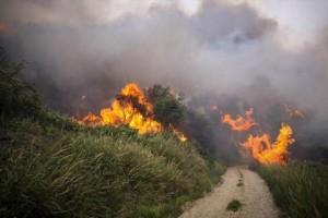 Μεγάλη φωτιά στη Σκόπελο!