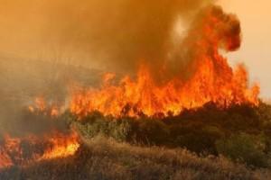 Πυρκαγιά στις Σέρρες!
