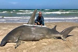 Πήγε για ψάρεμα και έπιασε καρχαρία τεσσάρων μέτρων! (video)
