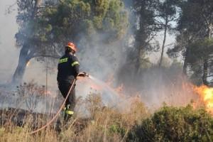 Προσοχή: Πολύ υψηλός ο κίνδυνος πυρκαγιάς σήμερα, Δευτέρα! - Ποιες περιοχές κινδυνεύουν