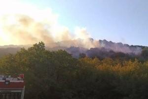Ξέσπασε ξανά φωτιά στην Αλεξανδρούπολη! (video)