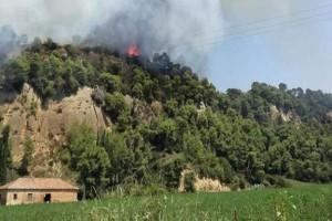 Φωτιά στην Αμαλιάδα: Απομακρύνεται ο κίνδυνος για το χωριό Δαφνιώτισσα!
